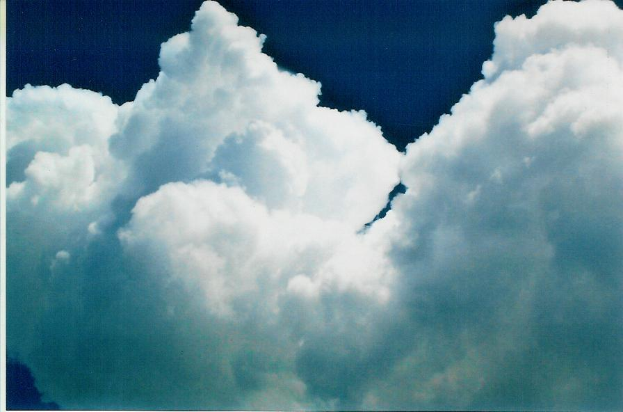 Yummy Clouds! Photo by The Art Angel Bethann Shannon 2008